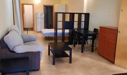Lofts de alquiler en Villaviciosa de Odón