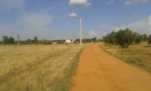 Terreno Urbanizable en Venta en Virgen del Socorro en Ctra. De la Aldea del Rey / Argamasilla de Calatrava
