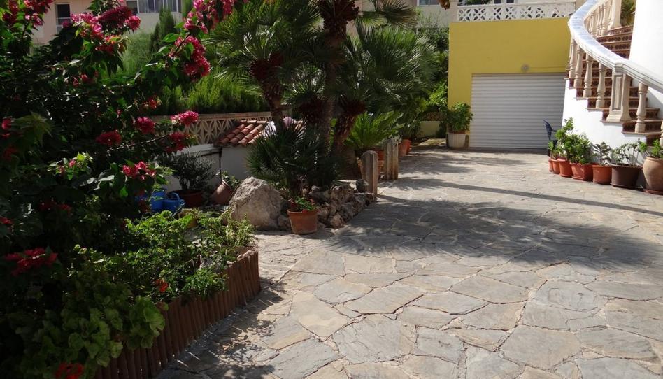 Foto 1 von Erdgeschoss zum verkauf in Peguera, Illes Balears