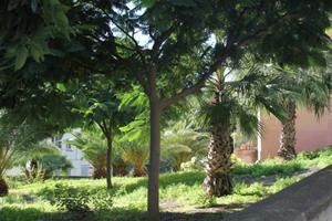 Piso en Venta en Santa Cruz de Tenerife ,salud Alto / La Salud - La Salle