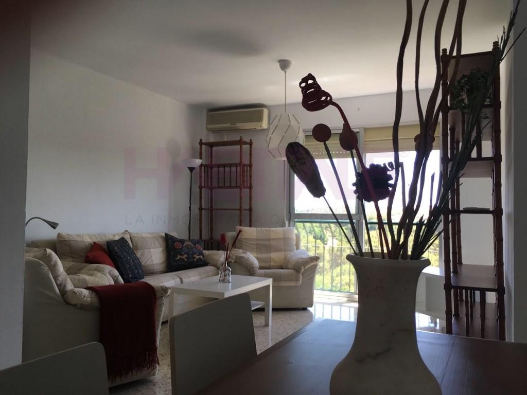 Viviendas y casas de alquiler en Los Molinos, Alcalá de Guadaira