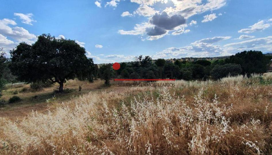 Photo 1 of Land for sale in El Bosque, Madrid
