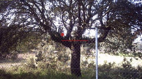 Photo 2 of Land for sale in El Bosque, Madrid