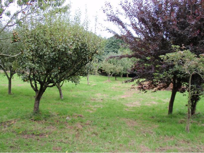 Foto 1 de Chalet en Montrove - Oleiros / Nós, Oleiros