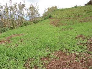 Terreno en Venta en Santa Maria de Guia ,montaña Alta / Santa María de Guía de Gran Canaria