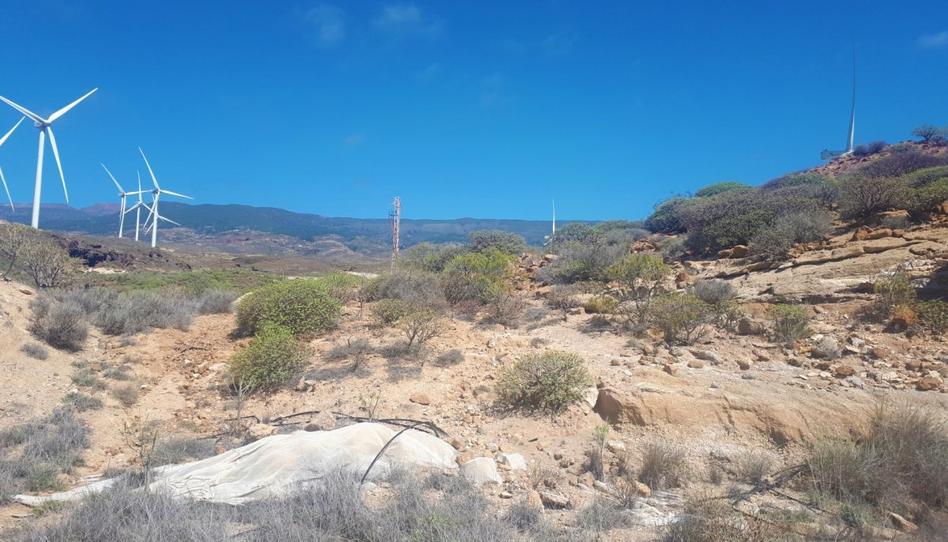 Foto 1 de Terreno en venta en Laja Blanca Arico, Santa Cruz de Tenerife