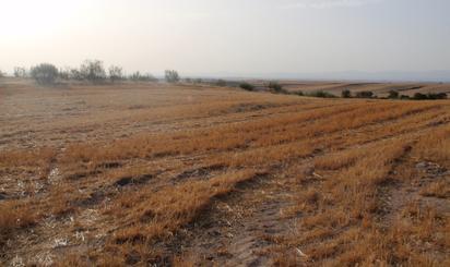 Terreno en venta en Serranillos del Valle