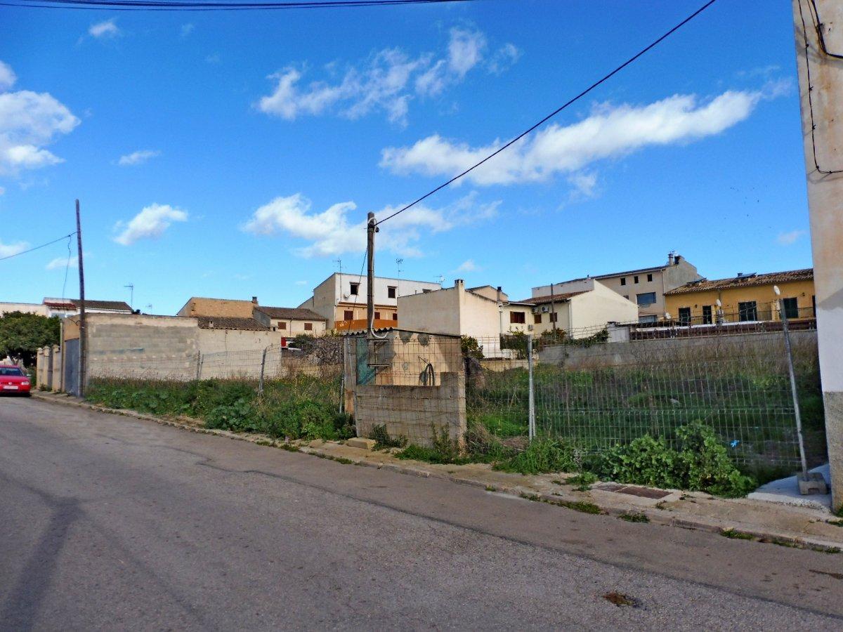 Solar urbano  Vilafranca de bonany ,villafranca de bonany. Solar urbano en villafranca de bonany