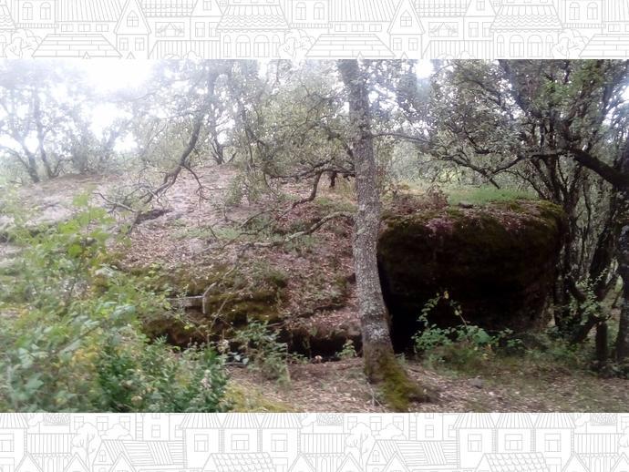 Foto 22 de Finca rústica en  Hereu, 31 / Baix Pallars