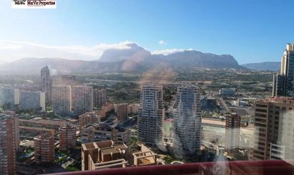 Viviendas y casas de alquiler en TRAM Benidorm Intermodal, Alicante