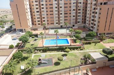 Piso de alquiler en Alicante / Alacant