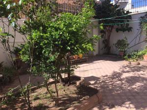 Planta baja en Alquiler en Creu Alta / Creu Alta - Puiggener