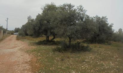 Grundstuck zum verkauf in Castellón Provinz