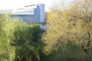 Alquiler Vivienda Piso campus norte