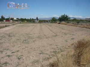 Terreno en Venta en Molina de Segura ,ribera de Molina / Molina de Segura