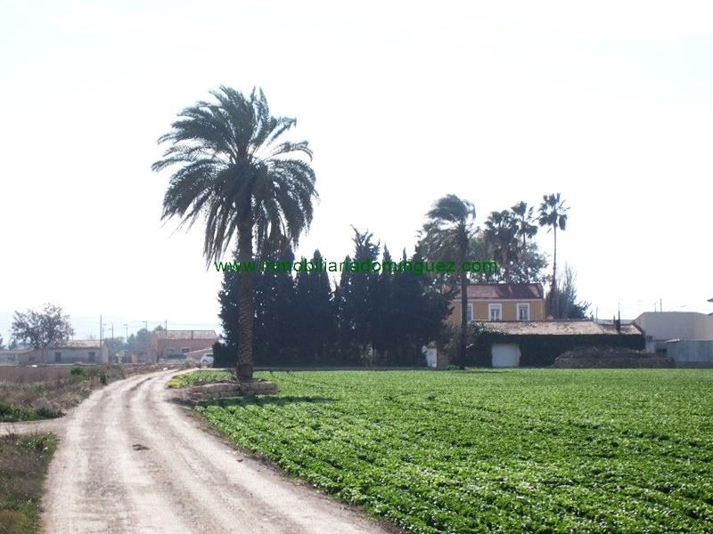 Finca rústica en venta en Santomera, Zona de - Santomera