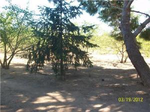 Terreno en Venta en Camino / La Selva del Camp