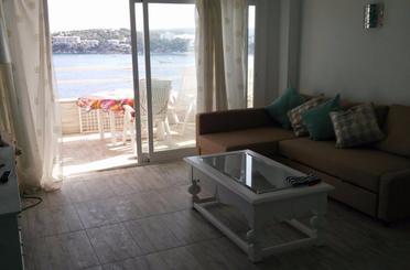 Wohnung miete Ferienwohnung in Martín Ros García, Magaluf - Palmanova - Badia de Palma
