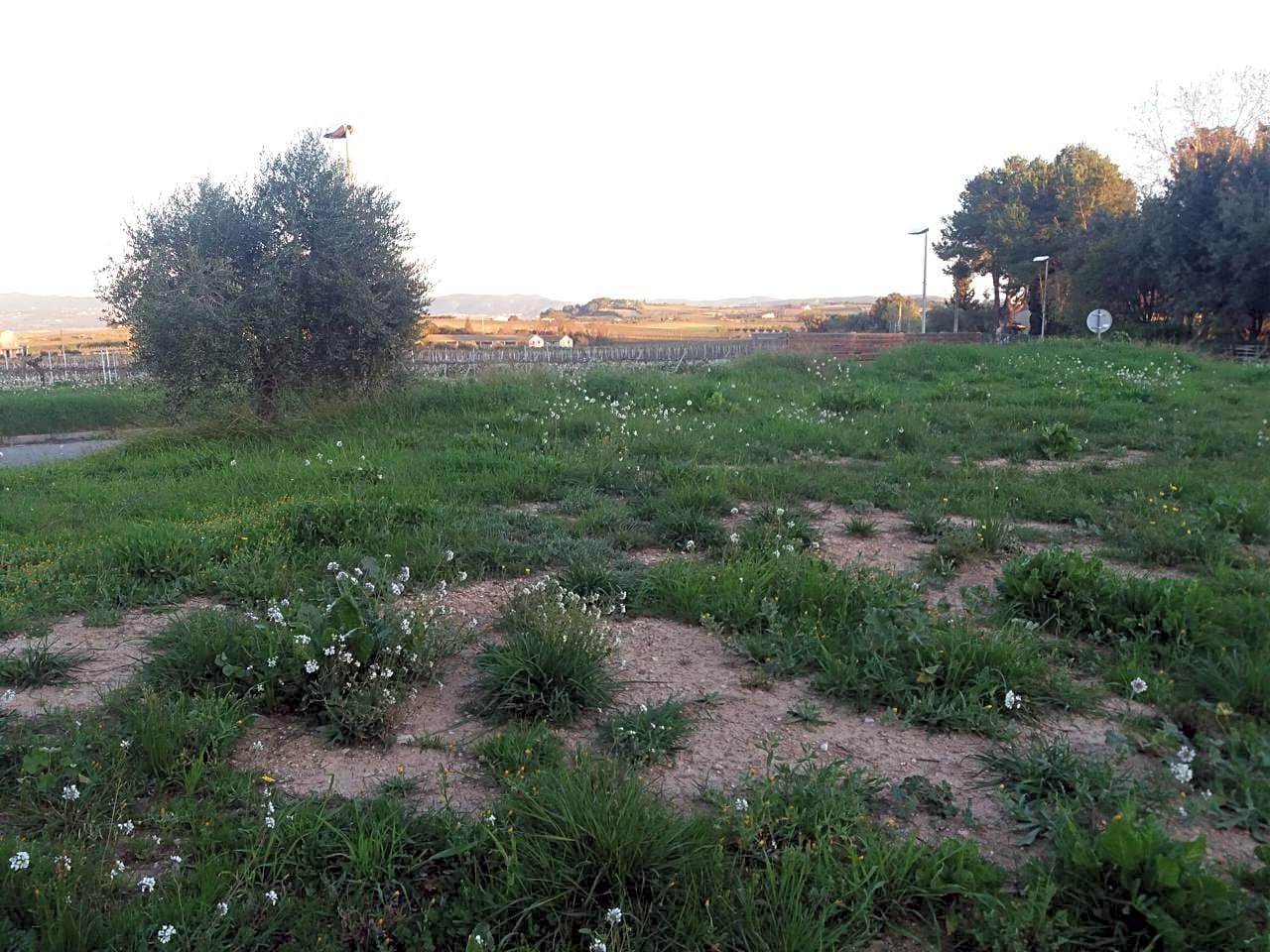 Solar urbà en Font-rubí. Este terreno edificable se encuentra en fontrubí, barcelona. es