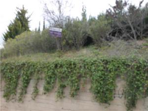 Venta Terreno Terreno Residencial ricardo opisso, 52