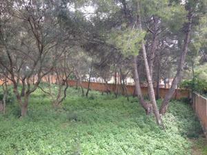 Venta Terreno Terreno Urbanizable 309