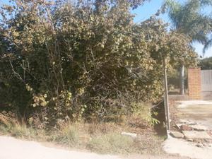 Terreno en Venta en Riudoms, Zona de - Riudoms / Riudoms