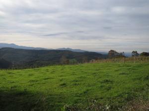 Terreno en Venta en Liermo / Ribamontán al Monte