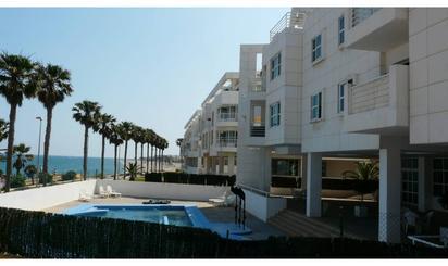 Viviendas y casas de alquiler en Roquetas de Mar ciudad, Roquetas de Mar