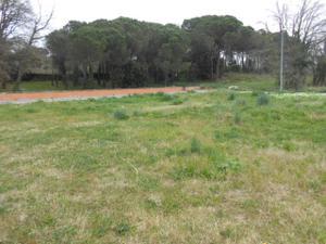 Terreno Urbanizable en Venta en Arnau Vilanova Amb C/tossa / Vidreres