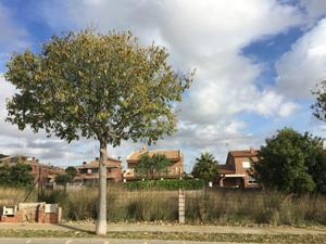 Terreno Residencial en Venta en Urbanización Bonavista / Calafell