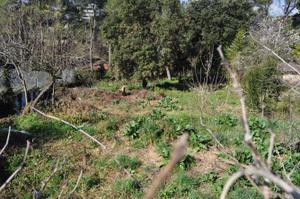 Venta Terreno Terreno Residencial terranova-bellaterra