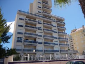 Venta Vivienda Apartamento guardamar del segura, zona de - guardamar del segura
