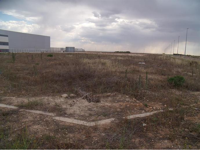 Foto 5 de Terreno en  Romica / Pedanías - Extrarradio,  Albacete Capital