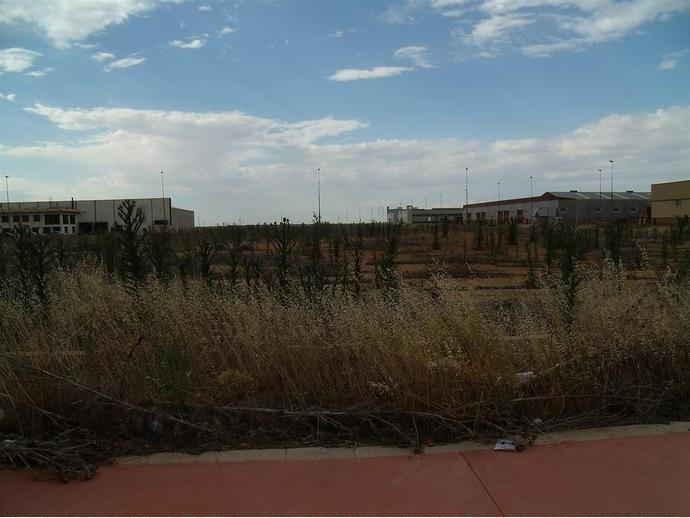 Foto 8 de Terreno en  Romica / Pedanías - Extrarradio,  Albacete Capital