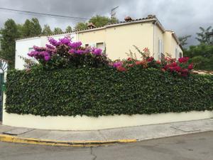 Casa adosada en Venta en Guadacorte / Los Barrios