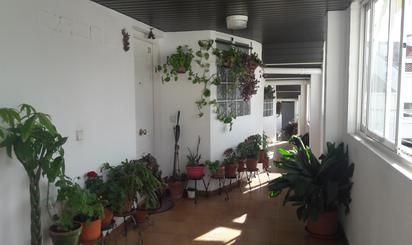 Dúplex en venta en Torres de la Alameda