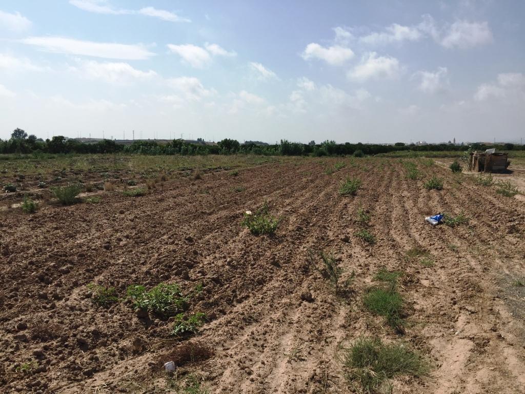 Solar urbà  Museros, zona de - Albuixech. Parcelas agricolas en valencia, museros y Albuixech