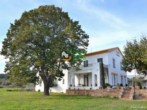 Finca rústica en Venta en Riudoms, Zona de - Les Borges del Camp / Les Borges del Camp