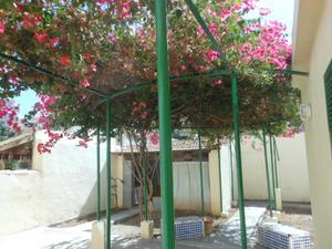 Planta baja en Alquiler en Llevant - Marqués de la Fontsanta - Escuela Idiomas / Llevant