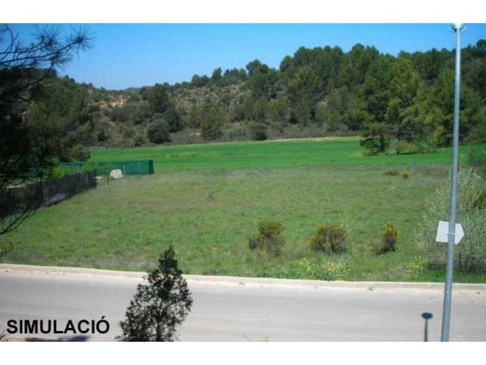 Foto 1 von Grundstücke in Tona