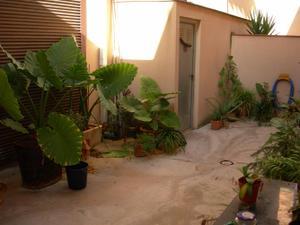 Alquiler Vivienda Planta baja cami can canyes