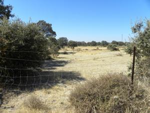 Venta Terreno Terreno Urbanizable resto provincia de cáceres - deleitosa