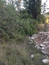 Venta Terreno Terreno Residencial urb. manous 2 - el catllar