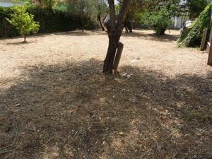 Terreno Residencial en Venta en Can Estaper / Ca n'Esteper – Can Gorgs – Can Gorgs II