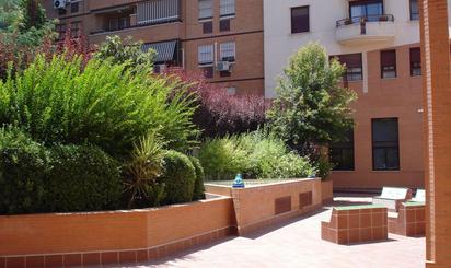 Pisos de alquiler con ascensor en Sevilla Provincia