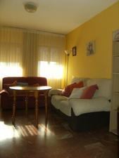 Alquiler Vivienda Apartamento sur - el plantinar – avda. la paz - el juncal