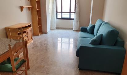 Estudios de alquiler en Ceuta Provincia