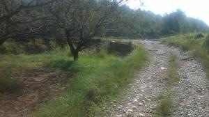 Terreno en Venta en Alt Camp - Vallmoll / Vallmoll