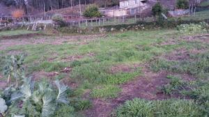 Terreno Residencial en Venta en Marcón / Parroquias Rurales