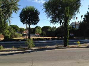 Venta Terreno Terreno Residencial villaviciosa de odón - el castillo campodón